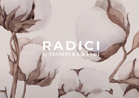 Banner-home-Radici 480x340